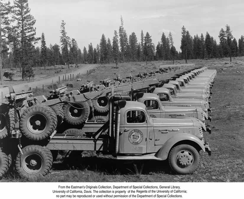Logging lineup | Lumber and Log Trucks | Pinterest | Lineup, Logs ...